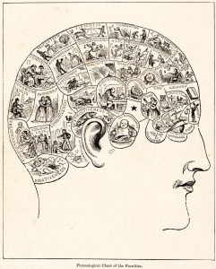 The 'science' of phrenology